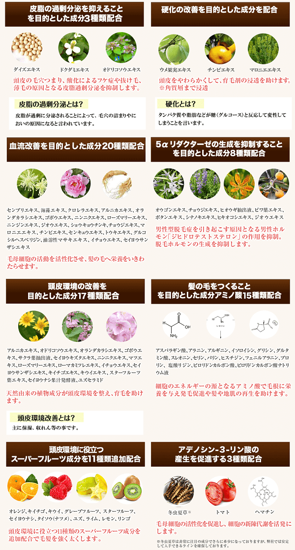 chapup_zenseibun