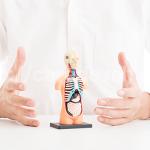 マジ!プロペシアの副作用で癌の発症リスクが高まる!?