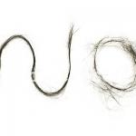 【抜け毛3倍?】チャップアップの初期脱毛で絶望!?